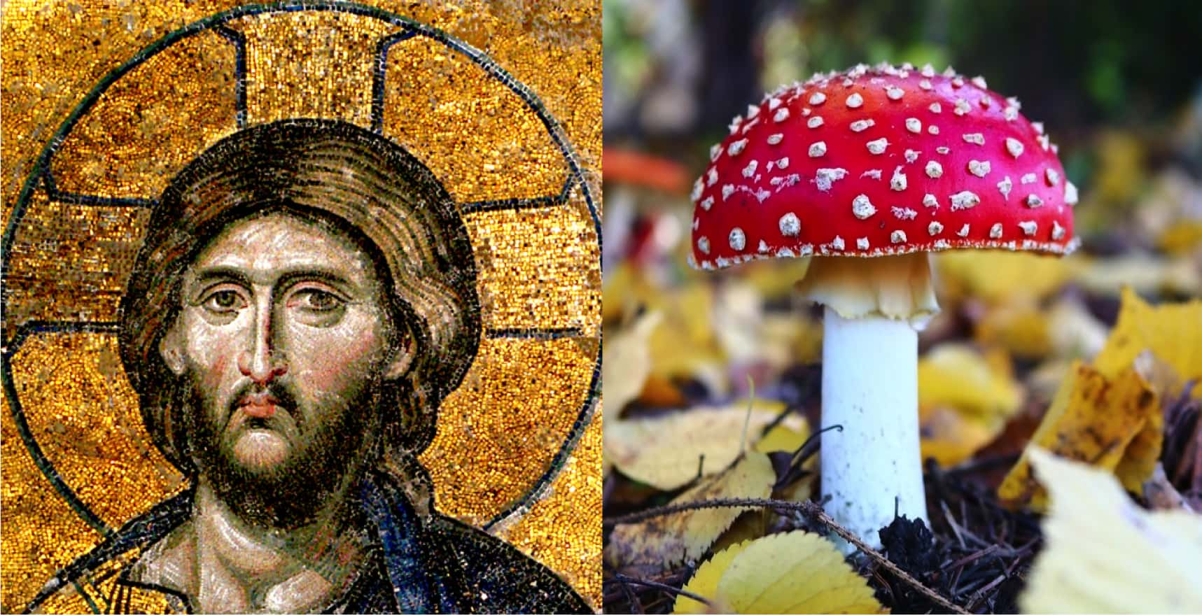 The Psychedelic Origin of Christianity