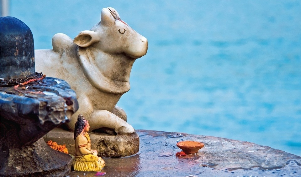 Animal Ethics in Hinduism, Buddhism and Jainism
