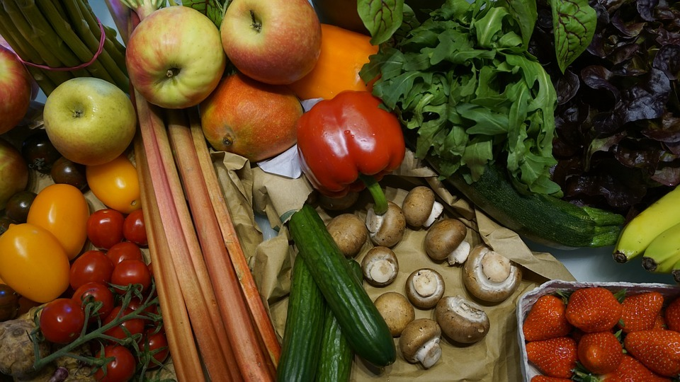 New Study Finds a Vegan Diet Can Significantly Reduce Your Carbon Footprint
