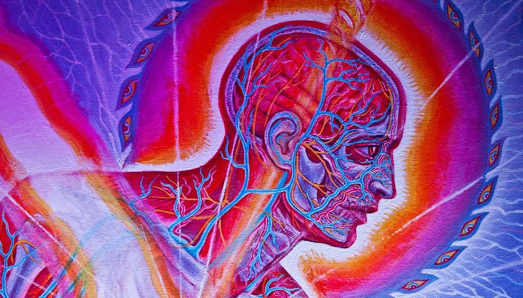 Understanding the Psychedelic Ego