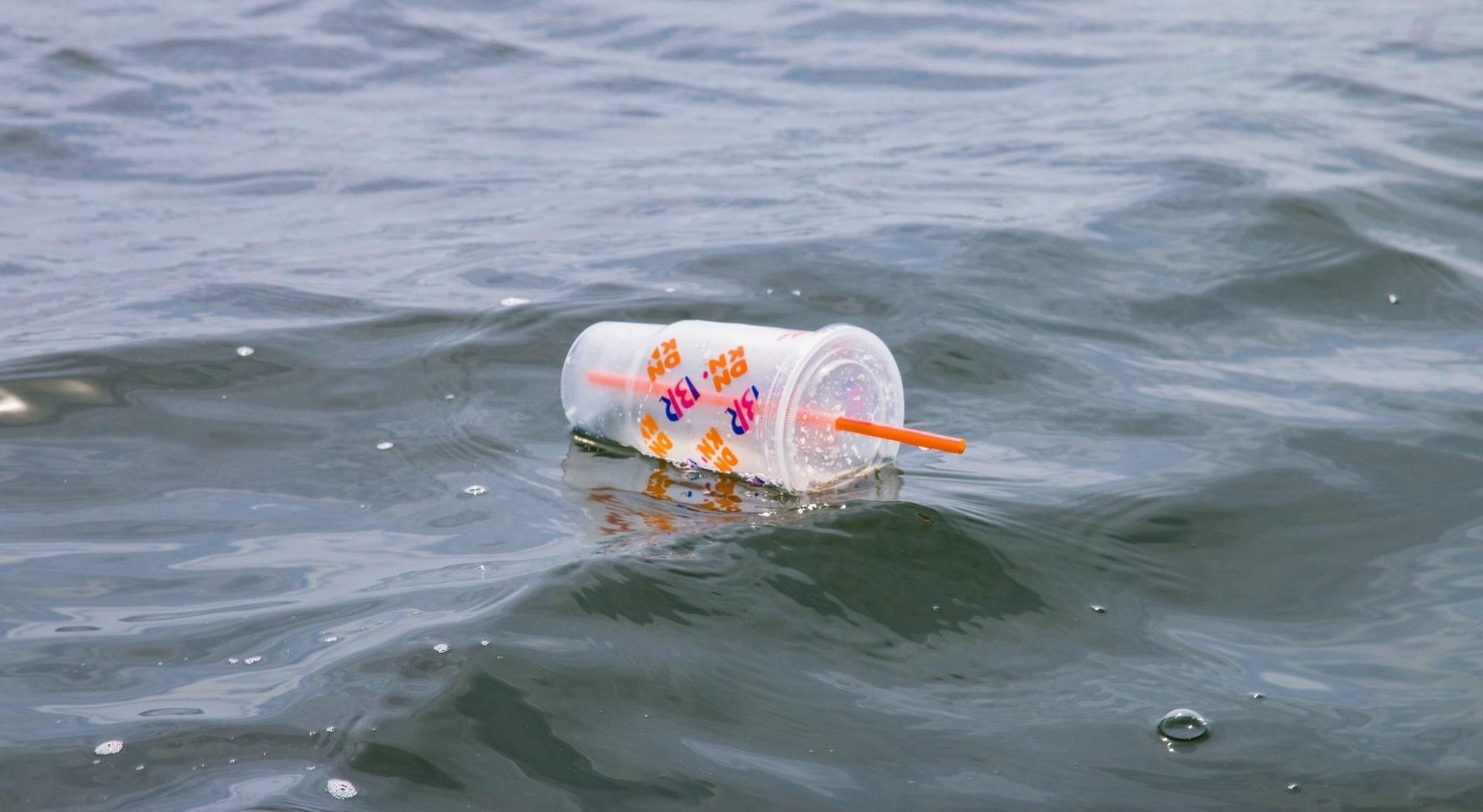The Inefficacy of Bans on Single-Use Plastics